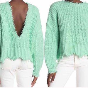 WILDFOX Deep V Reversible Palmetto Sweater